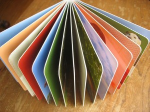 A board book has thick pages which make it easy for little hands to flip and hard for little hands to rip.